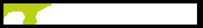Netflex  Logo